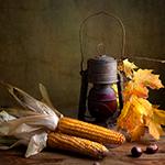 Leuchtkasten Herbst